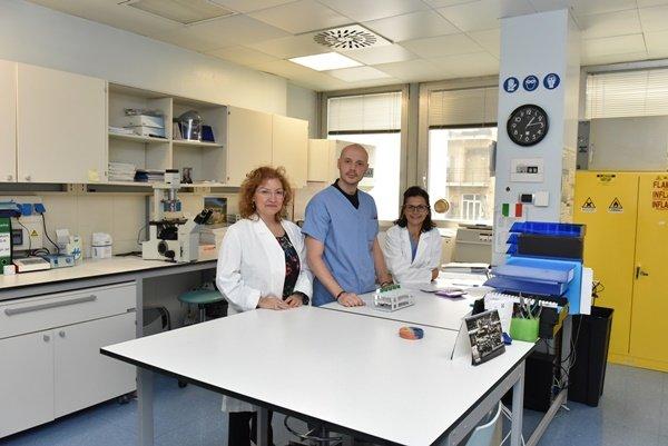 laboratorio citogenetica